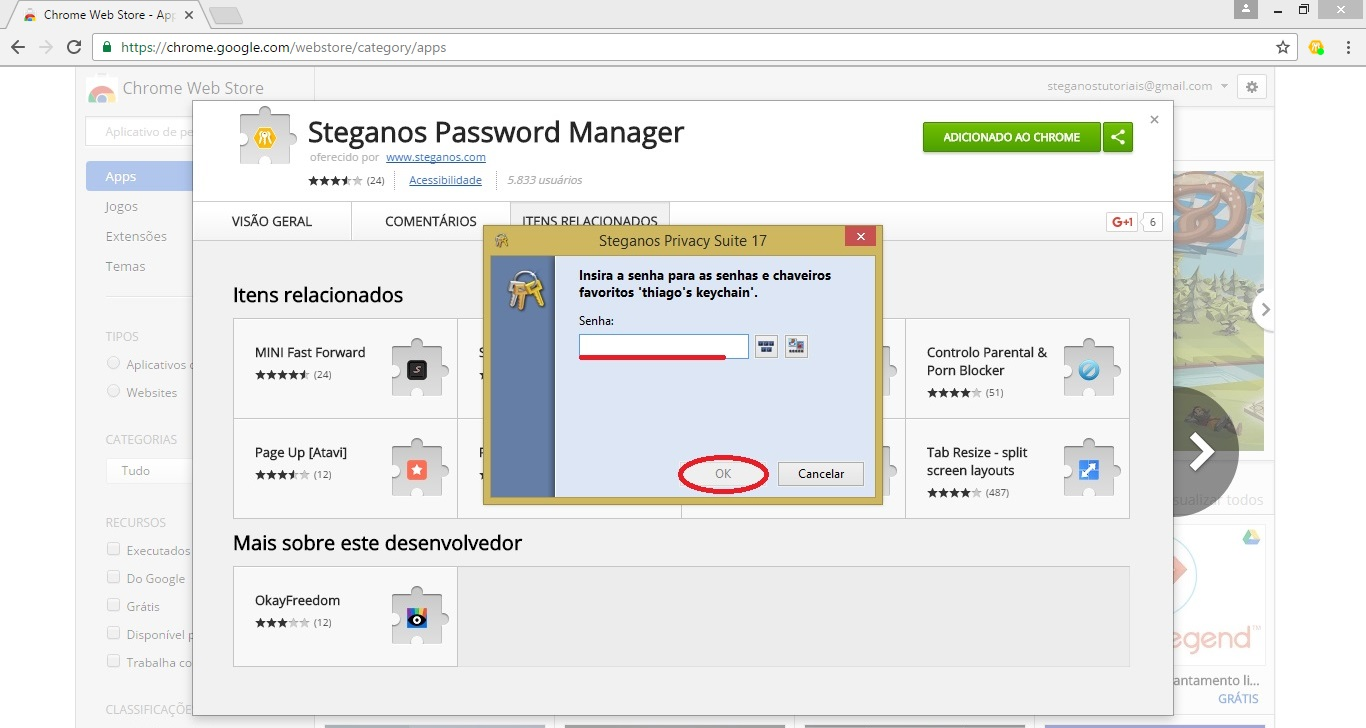 Configurar Steganos Password Manager para navegador web